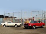 Photos of Shelby GT350 & GT500 1968