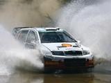 Images of Škoda Fabia WRC (6Y) 2003–08