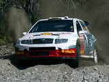 Škoda Fabia WRC (6Y) 2003–08 pictures