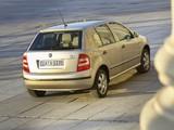 Škoda Fabia (6Y) 2005–07 pictures