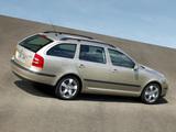 Škoda Octavia Combi (1Z) 2004–08 photos