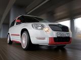 BT Design Škoda Yeti 2011 images