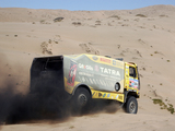 Tatra T815 4x4 Rally Truck 2010–11 photos