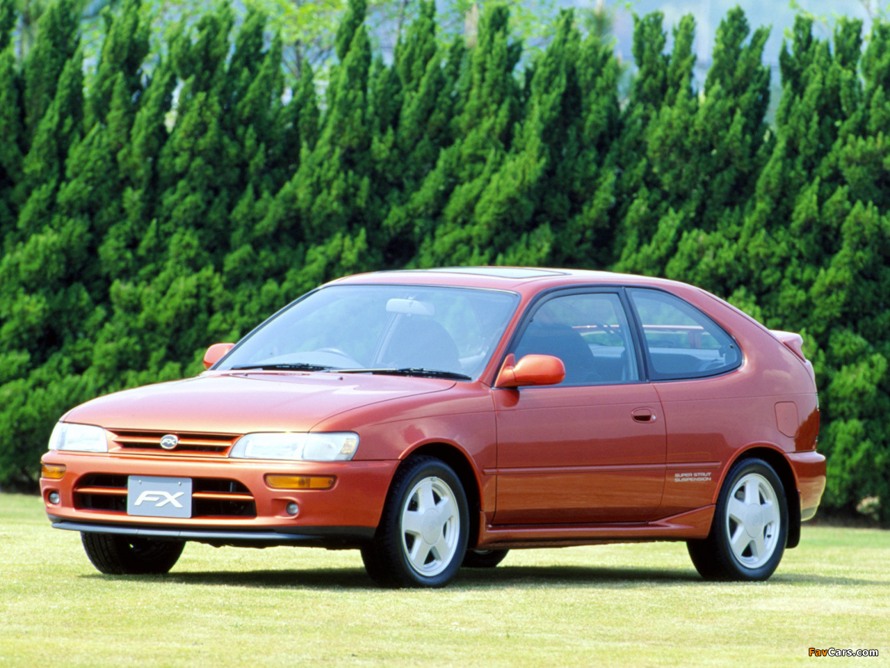 Toyota Corolla Fx Jp Spec E100 1992 95 Wallpapers 1280x960