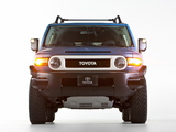 Images of Toyota FJ Cruiser Trail Teams Ultimate (GSJ15W) 2014