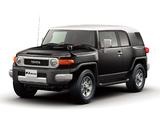 Pictures of Toyota FJ Cruiser JP-spec (GSJ15W) 2010