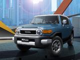 Toyota FJ Cruiser UAE-spec (GSJ15W) 2010 images