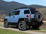 Toyota FJ Cruiser Trail Teams Ultimate (GSJ15W) 2014 photos