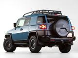 Toyota FJ Cruiser Trail Teams Ultimate (GSJ15W) 2014 wallpapers