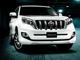 Images of Modellista Toyota Land Cruiser Prado 5-door (150) 2013