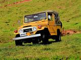 Images of Toyota Land Cruiser (BJ40) 1973–79