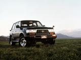 Photos of Toyota Land Cruiser 80 VAN VX-Limited JP-spec (HZ81V) 1995–97