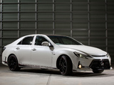 Images of Toyota Mark X G Sports Carbon Roof Concept (GRX140) 2013