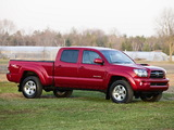 Pictures of TRD Toyota Tacoma Double Cab Sport Edition 2006–12