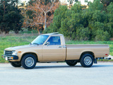 Toyota Deluxe Long Truck 2WD (RN44) 1982–83 pictures