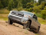 TRD Toyota Tundra Double Cab SR5 2013 pictures