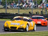 Images of TVR Sagaris GT 2008