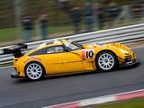 TVR Sagaris GT 2008 pictures