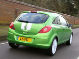 Vauxhall Corsa Sting (D) 2013 pictures