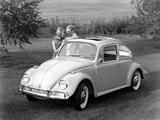 Images of Volkswagen Beetle 1962–68