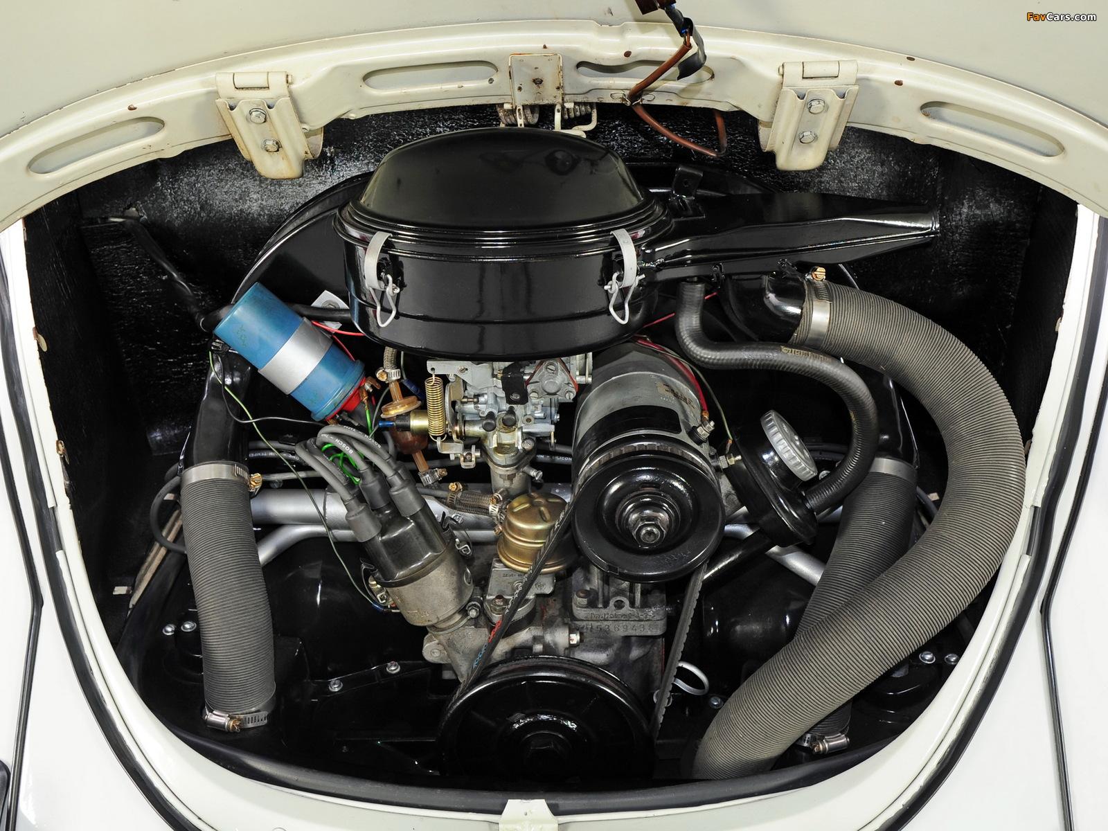 Images of Volkswagen Beetle 1968–72 (1600 x 1200)