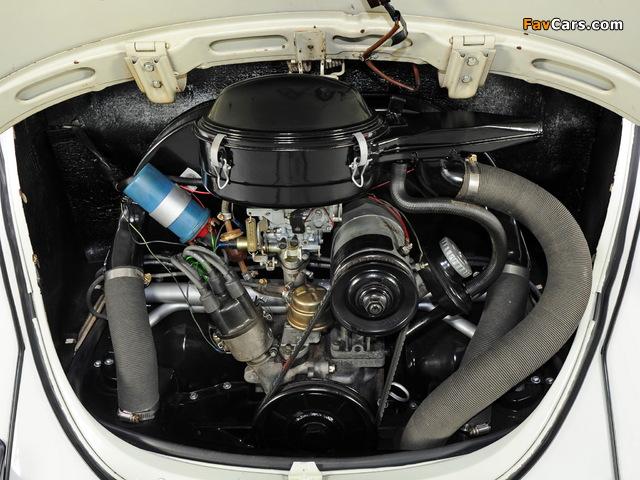 Images of Volkswagen Beetle 1968–72 (640 x 480)