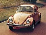 Images of Volkswagen Beetle 1976