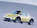 Images of Volkswagen New Beetle Dune Concept 2000