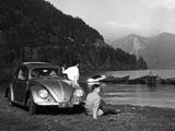 Photos of Volkswagen Käfer 1100 (Typ 11) 1949–53