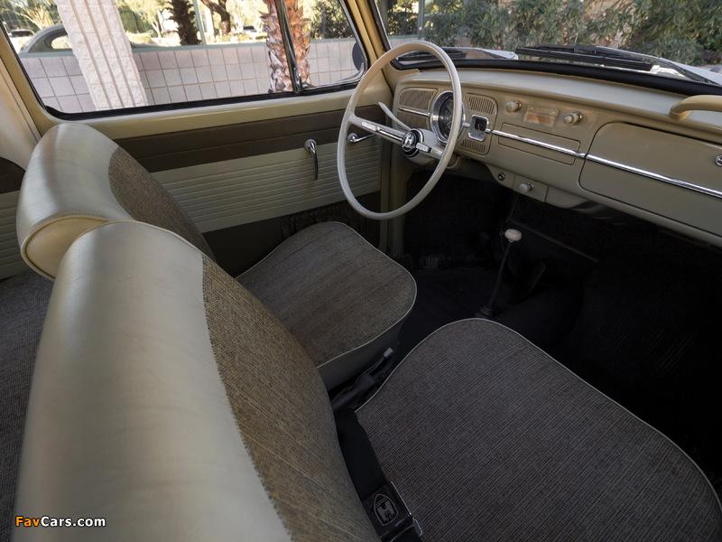 Photos of Volkswagen Beetle North America 1965 (800 x 600)