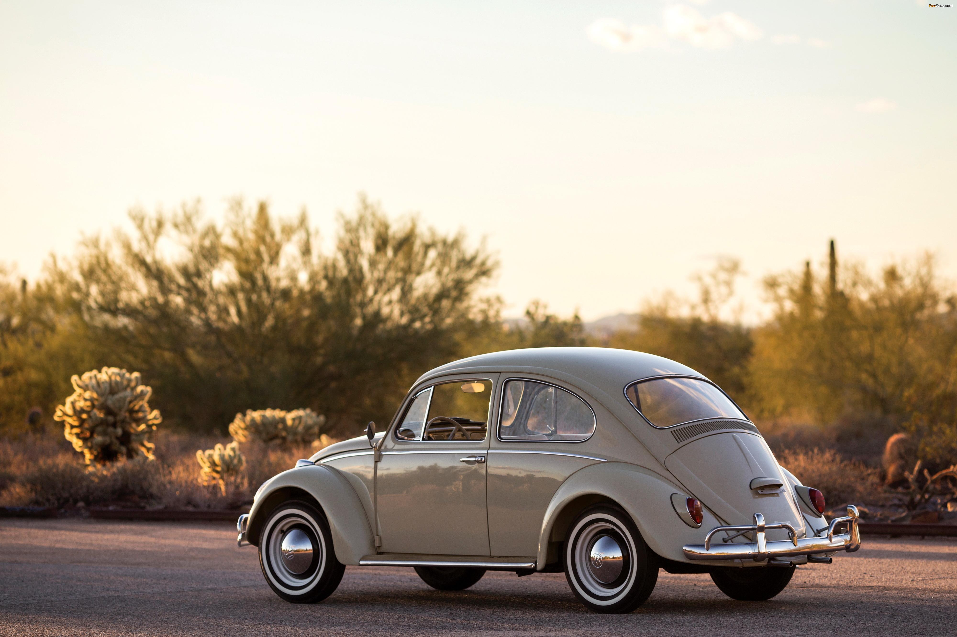 Photos of Volkswagen Beetle North America 1965 (4000 x 2666)
