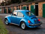 Photos of Volkswagen Beetle La Grande Bug 1975