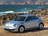 Photos of Volkswagen Beetle 2011
