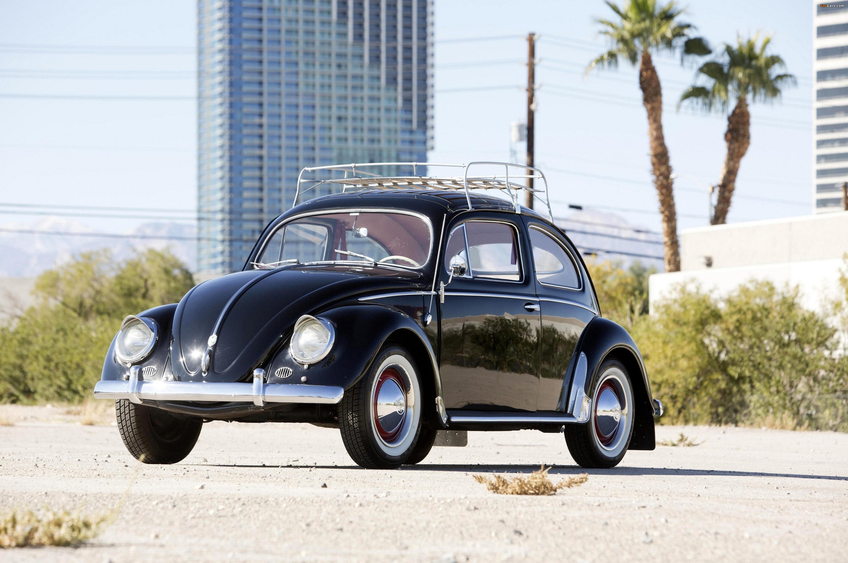 Pictures of Volkswagen Beetle North America 1954 (3600 x 2390)