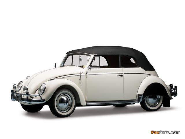 Pictures of Volkswagen Beetle Convertible US-spec 1959 (640 x 480)