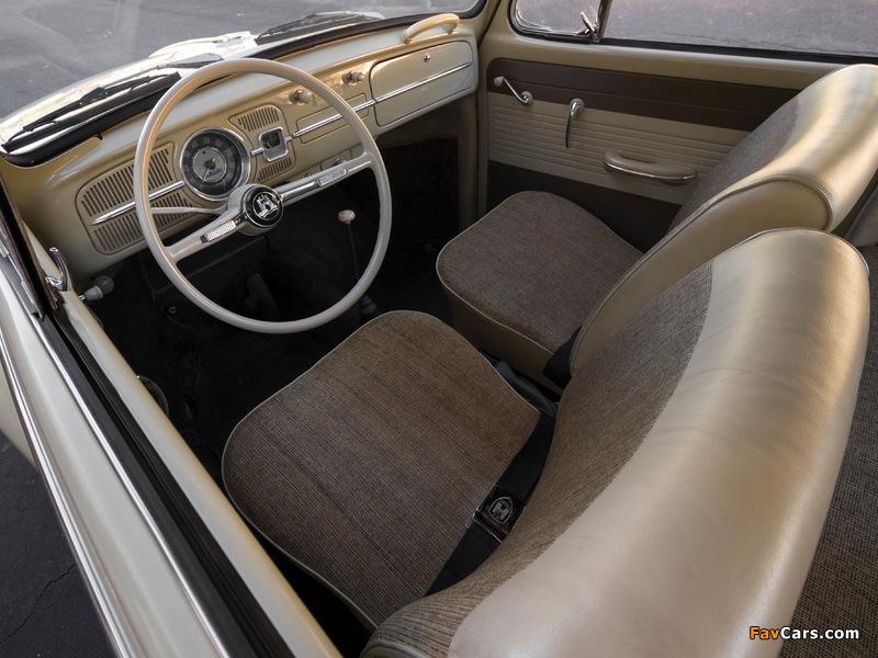 Pictures of Volkswagen Beetle North America 1965 (800 x 600)