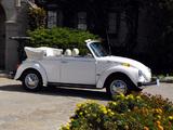 Pictures of Volkswagen Beetle Convertible Bicentennial 1976