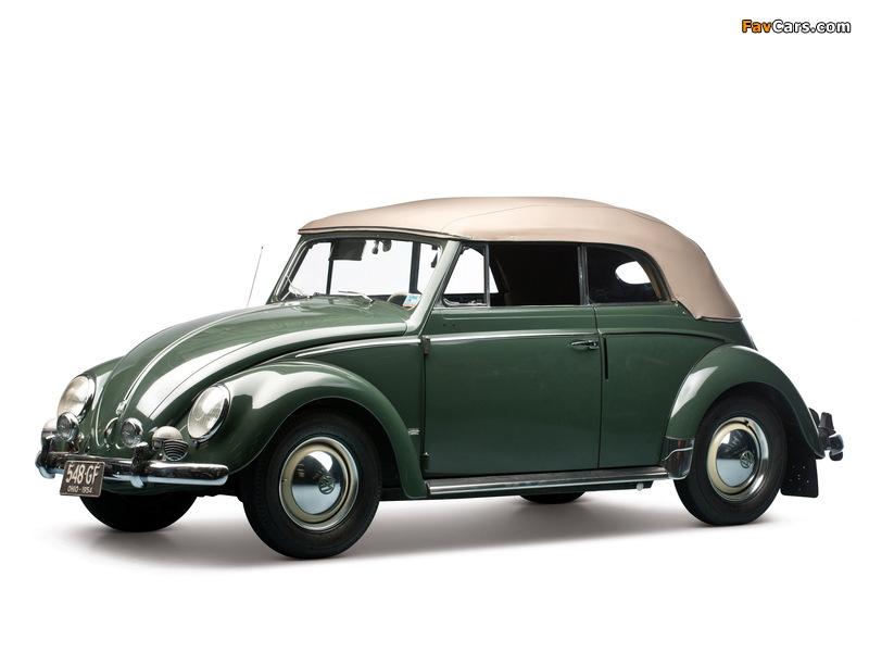 Volkswagen Beetle Convertible 1953–57 pictures (800 x 600)