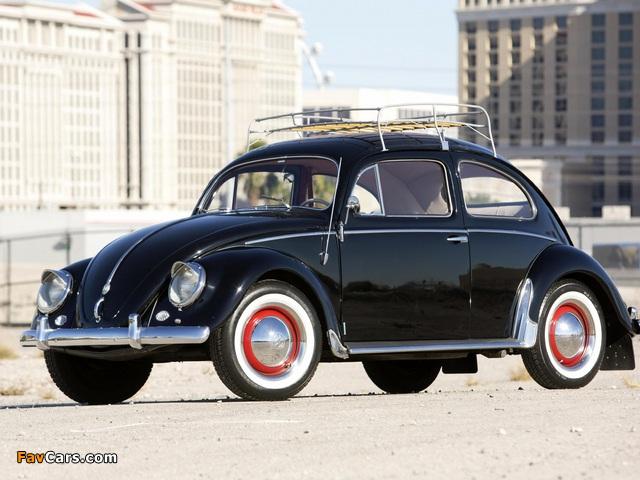 Volkswagen Beetle North America 1954 pictures (640 x 480)