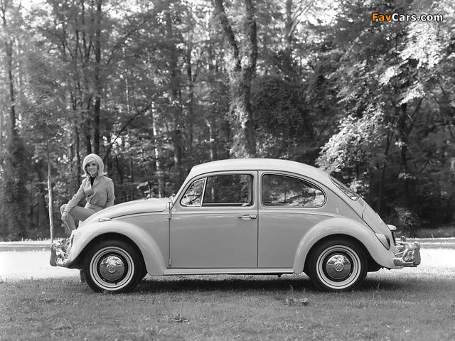 Volkswagen Beetle 1962–68 images (640 x 480)