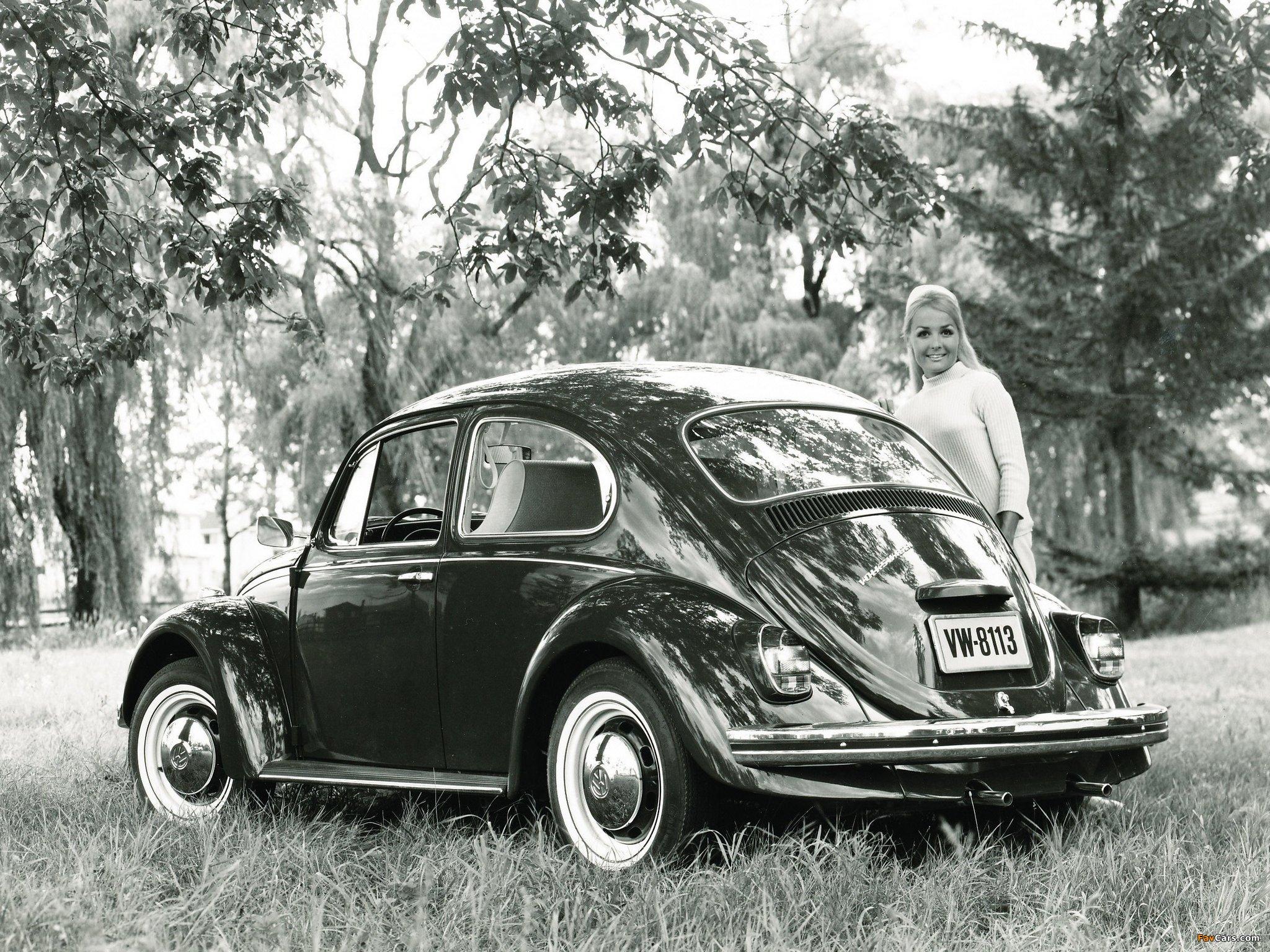 Volkswagen Beetle 1962–68 photos (2048 x 1536)