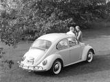 Volkswagen Beetle 1962–68 photos