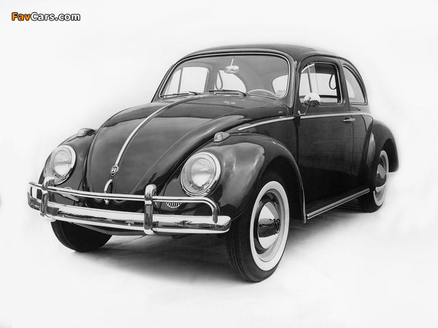 Volkswagen Beetle 1962–68 pictures (640 x 480)