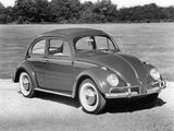 Volkswagen Beetle 1962–68 pictures