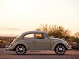 Volkswagen Beetle North America 1965 images