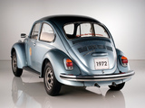 Volkswagen 1302 S Weltmeister 1972 wallpapers