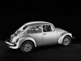 Volkswagen Beetle 1976 pictures