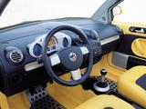 Volkswagen New Beetle Dune Concept 2000 photos