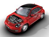 Volkswagen Beetle Turbo 2011 photos