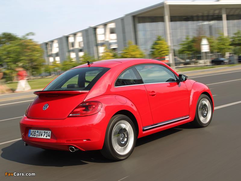 Volkswagen Beetle 2011 wallpapers (800 x 600)